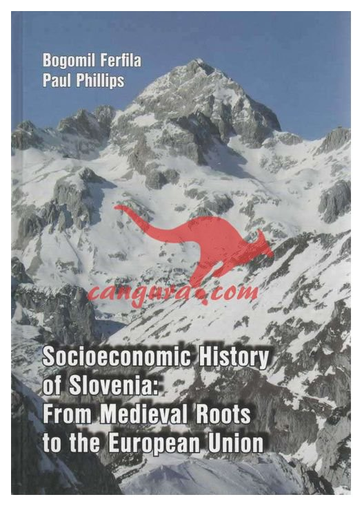 Socioeconomic history of Slovenia - From medieval roots to European Union - Political processes and institutions